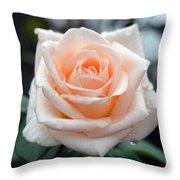 Peachy Rose Throw Pillow