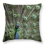 Peacock 1 Throw Pillow