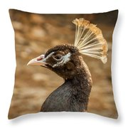 Peacock 8 Throw Pillow