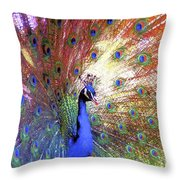 Peacock Beauty Colorful Art Throw Pillow