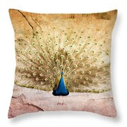 Peacock Bird Textured Background Throw Pillow