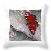 Peacock Butterfly Throw Pillow