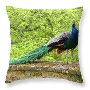 Peacock, Chateau De Saint-germain-de-livet Throw Pillow