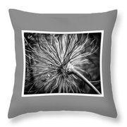 Peacock Flower Throw Pillow