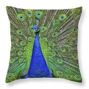 Peacock In A Oak Glen Autumn 3 Throw Pillow
