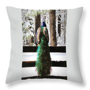 Peacock In The Snow Throw Pillow