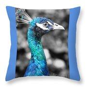 Peacock Luminance Throw Pillow