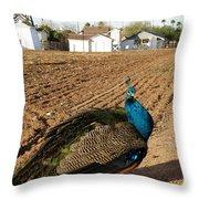 Peacock On The Farm Throw Pillow