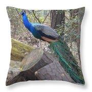 Peacock On Woodpile Throw Pillow