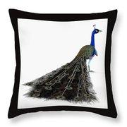 Peacock Profile Throw Pillow