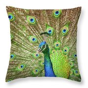 Peacock Showing Off Throw Pillow