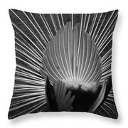Peacocks Ass Original Throw Pillow
