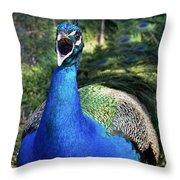 Peacocks Squawk Throw Pillow