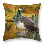 Peahen In Autumn Throw Pillow