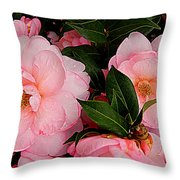 Peak Of Pink Perfection Throw Pillow