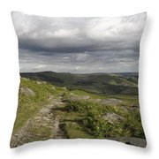 Peak Path Throw Pillow