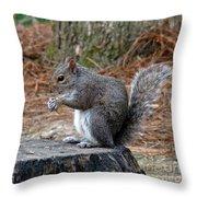 Peanut Feast Throw Pillow