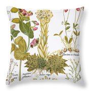 Peanuts, 1613 Throw Pillow