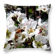 Pear Blossoms And Bee Throw Pillow