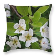 Pear Blossoms In Full Bloom Throw Pillow