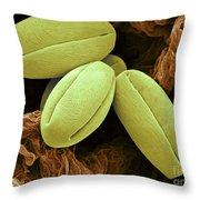 Pear Pollen Grains, Sem Throw Pillow