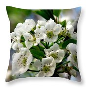 Pear Tree Blossoms 1 Throw Pillow