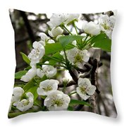 Pear Tree Blossoms 2 Throw Pillow