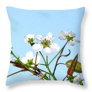 Pear Tree Blossoms 6 Throw Pillow