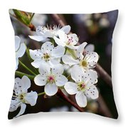Pear Tree Blossoms II Throw Pillow