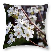 Pear Tree Blossoms IIi Throw Pillow