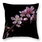 Peach Tree Blossum Throw Pillow