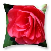 Pearl Of Beauty - Red Camellia Throw Pillow