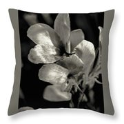 Pearlescent Throw Pillow