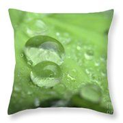 Pearls On Leaf 3 Throw Pillow