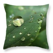 Pearls On Leaf 5 Throw Pillow