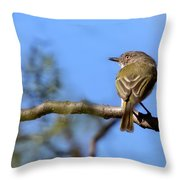 Pearly-vented Tody-tyrant Throw Pillow