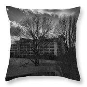 Pearson Education Building Throw Pillow