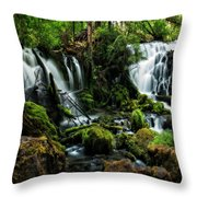 Pearsony Falls Throw Pillow
