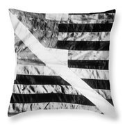 Pearys Expedition Throw Pillow