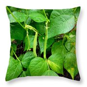 Peas Growing On The Farm 1 Throw Pillow