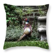 Peasant Pheasant Throw Pillow