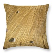 Pebbles And Texture On A Crosscut Log Throw Pillow