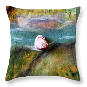 Pebbles At  The Stream Throw Pillow by Augusta Stylianou