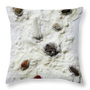 Pebbles In Snow Throw Pillow by Augusta Stylianou