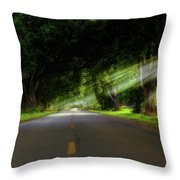 Pecan Alley Rays - Arkansas - Landscape Throw Pillow