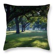 Pecan Grove Sunrise Throw Pillow