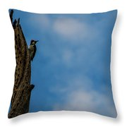 Pecking Away Throw Pillow