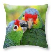 Pecking Order Throw Pillow