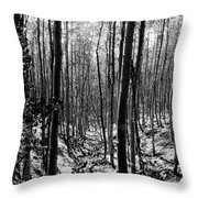 Pecos Wilderness Throw Pillow