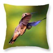 Peek-a-boo Hummingbird Throw Pillow